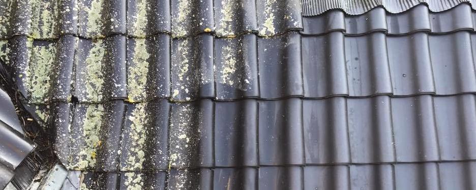 Dakreiniging uitgevoerd door Roof Expert in Ede